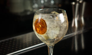 13-gin-tonic